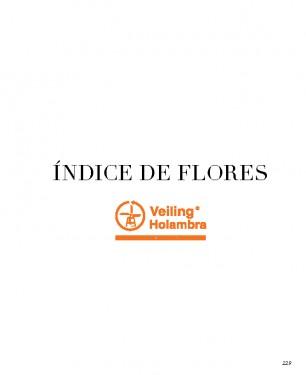 Indice_2